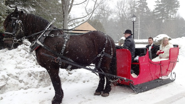 Ready for a sleigh ride. Photo by Alan Viau