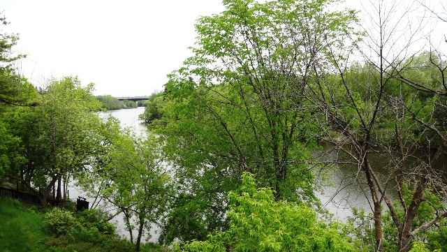 View of the Rideau River from their room. Photo by Alan Viau
